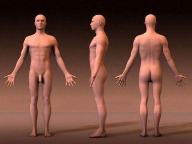 postura anatômica