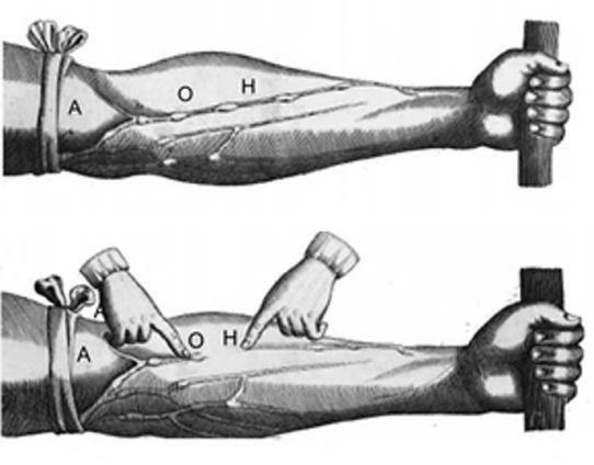 figura 2 jodonai